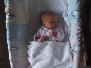 Sophia asleep in her Moses basket